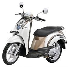 new car launches this yearHonda Scoopy will be launched this year to challenge Yamaha