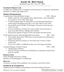 Hobbies And Interests Resume Gallery Of Doc 100 Cv Examples Hobbies And Interests R Sevte 71