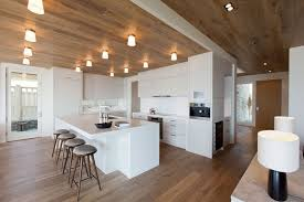 this all white kitchen breaks up the wood floor and ceiling to create a more modern looking space