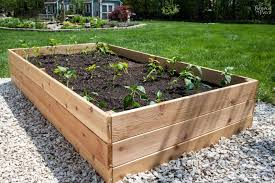 diy raised garden beds how to build raised garden beds that will last for years