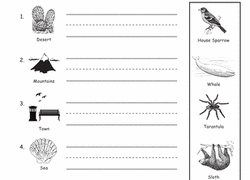 The idea behind these activities is that you collect the materials and pop them into a box or tray ready for kids to use! 1st Grade Science Worksheets Free Printables Education Com