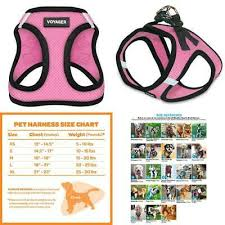 Voyager Harness Size Chart Ed Ellen Degeneres Pink Love Comfort Dog Harness Small