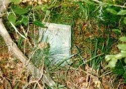 Effie Johnson Perkins (1855-1917) - Find A Grave Memorial
