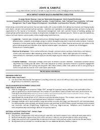 Merchandise Planner And Buyer Resume Pdf Version - Workbloom