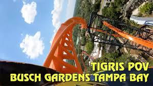 tigris roller coaster front back row pov at busch gardens ta bay