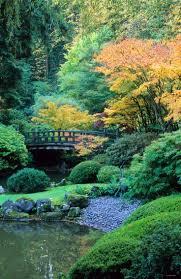 Japanese Garden Landscaping Best 20 Japanese Garden Style Ideas On Pinterest Japanese