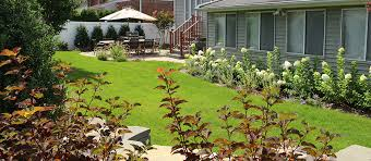 Landscape Design Backyard