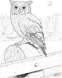 Small Picture Great Horned Owl coloring page Free Printable Coloring Pages