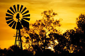 Image result for Windmill in an Australian setting.