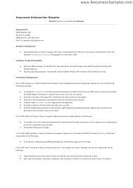 Sample Insurance Underwriter Resume