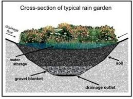 Small Picture Garden Design Garden Design with Rain gardens on Pinterest Rain