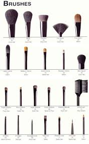 a pictorial guide to makeup brushes