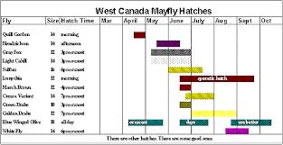 Cnyflyfish Com West Canada Creek