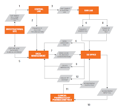 Clinical Data Management Flow Chart The Secure Data Office Concept Sgs