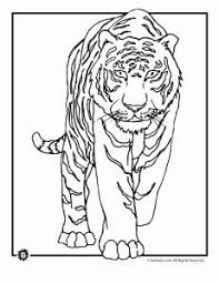 Small Picture tiger color page Fun learning Pinterest Tigers Embroidery