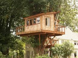 tree house plans for adults. Remarkable Ideas Tree House Plans For Adults The Treehouse Guide USA List T
