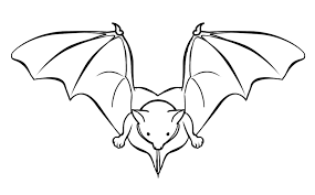 Small Picture Free bat coloring pages for kids ColoringStar