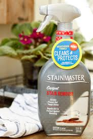 0 50 off new stainmaster carpet and rug stain remover at meijer cleanandprotect