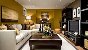 Small Modern Living Room Design Painting Custom Decorating