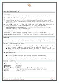 Sample Resume Retail Sales Associate No Experience Resume Layout Com