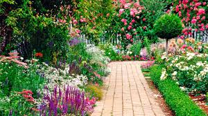 Small Picture Cottage Garden Designs Gardening Ideas