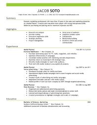 Marketing Professional Resume Samples Resume Peppapp
