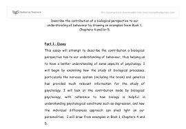 the contribution of a biological perspective to our understanding document image preview