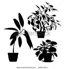sarka vokacova's portfolio on shutterstock House Plants For Sale set of vector indoor potted plants black silhouettes house plants for sale online