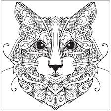 Small Picture Amazoncom Wild About Cats Adult Coloring Book With Bonus