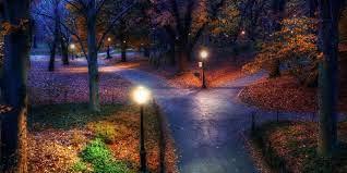 Central Park Autumn Night - 2000x1000 ...