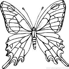 Coloring Pages Butterfly Printable Free Printable Coloring Pages
