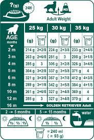 Golden Retriever Weight Chart Female Golden Retriever Puppy Feeding Chart Goldenacresdogs Com