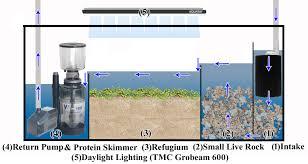 r aquarium sump marine algae scrubber deep sand refugium