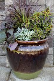 Small Picture Garden Design Garden Design with Container Garden Ideas Small