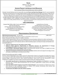 Resume Writer Atlanta Typical Professional Resume Writers Professional Resume Writers 1