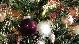 Weihnachtsbaum Kaufen Lagern Und Pflegen Mdrde