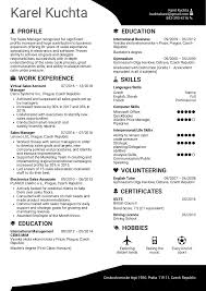 Resume Examples By Real People Sales Manager Resume Template