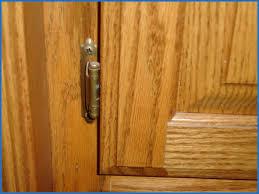 Kitchen Cabinet Door Hinges Types Kitchen Cabinets Decor 2018