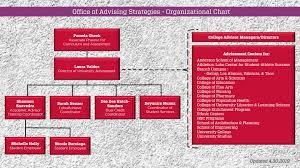 Organizational Chart Office Of Advising Strategies The