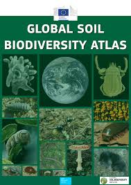 college essays college application essays biodiversity essay topics science essay con