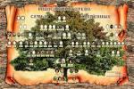 Родословное древо семьи сделанное