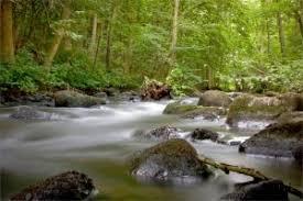 conservation of nature conservation of nature river