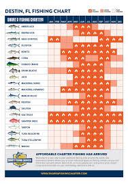 Florida Saltwater Fishing Regulations Chart Destin Florida Fishing Seasons Charts Whats Biting