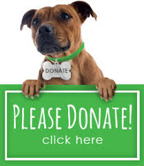 animal shelter donate.  Donate For Animal Shelter Donate A