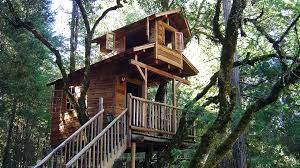 Exellent Simple Treehouse K Intended Design Inspiration