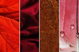 What Your Period Says About Health Explained