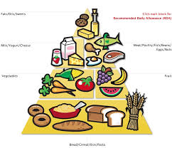 Image result for food pyramid 1985
