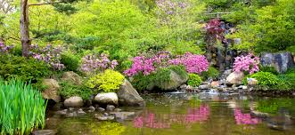 Japanese Garden Anderson Japanese Gardens Enjoy Illinois