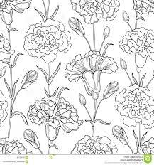 Stock Illustration Vector Seamless Pattern Outline Carnation Clove