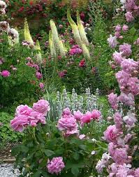 Small Picture 335 best English Country Garden images on Pinterest Flowers